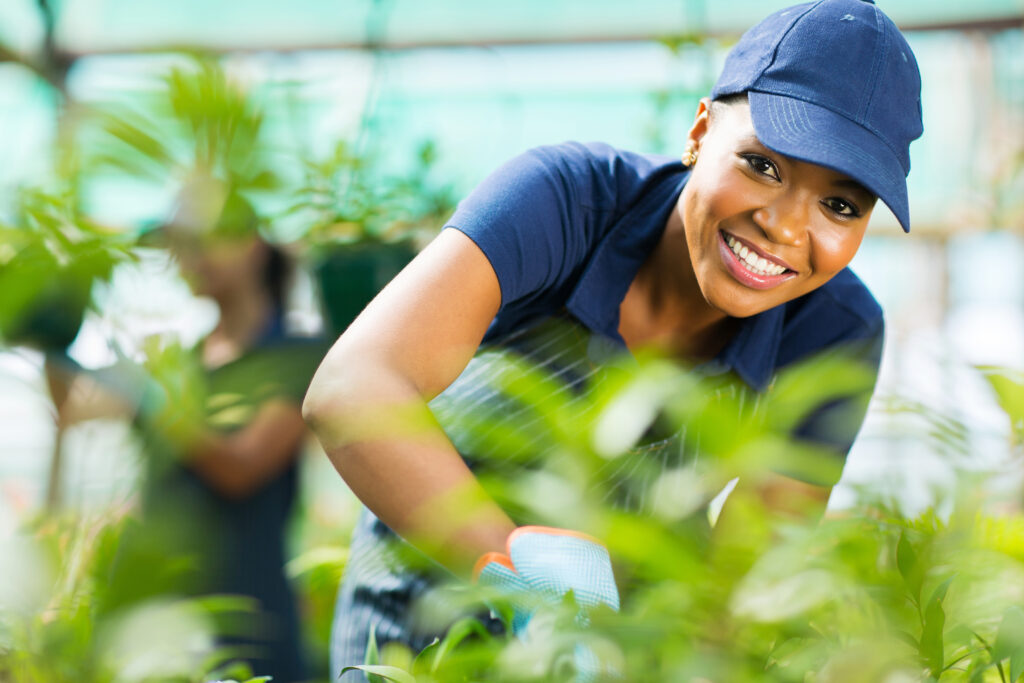 general labourer in greenhouse woman